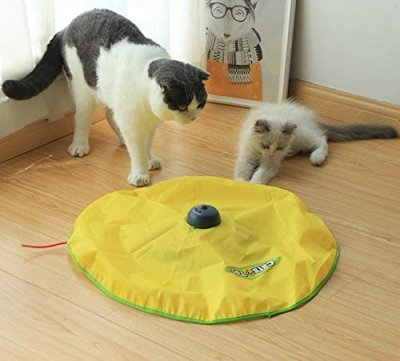 Cat Toy - Cat and Mouse
