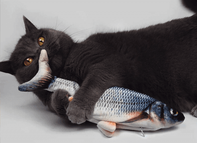 Cat toy - Splashing fish