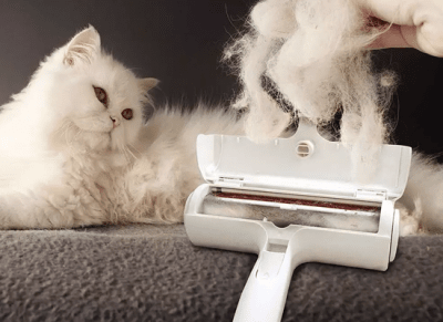 Hair and fur remover
