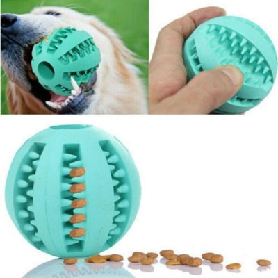 Activation Ball for Your Pet