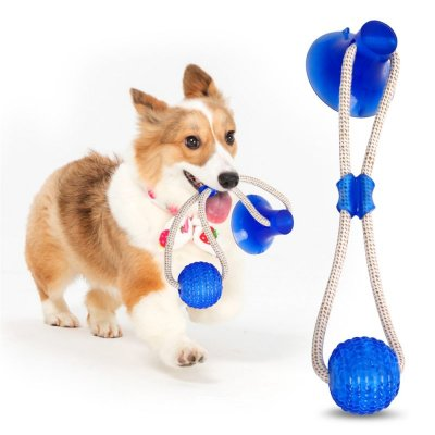 Dog Toy with Suction Cup